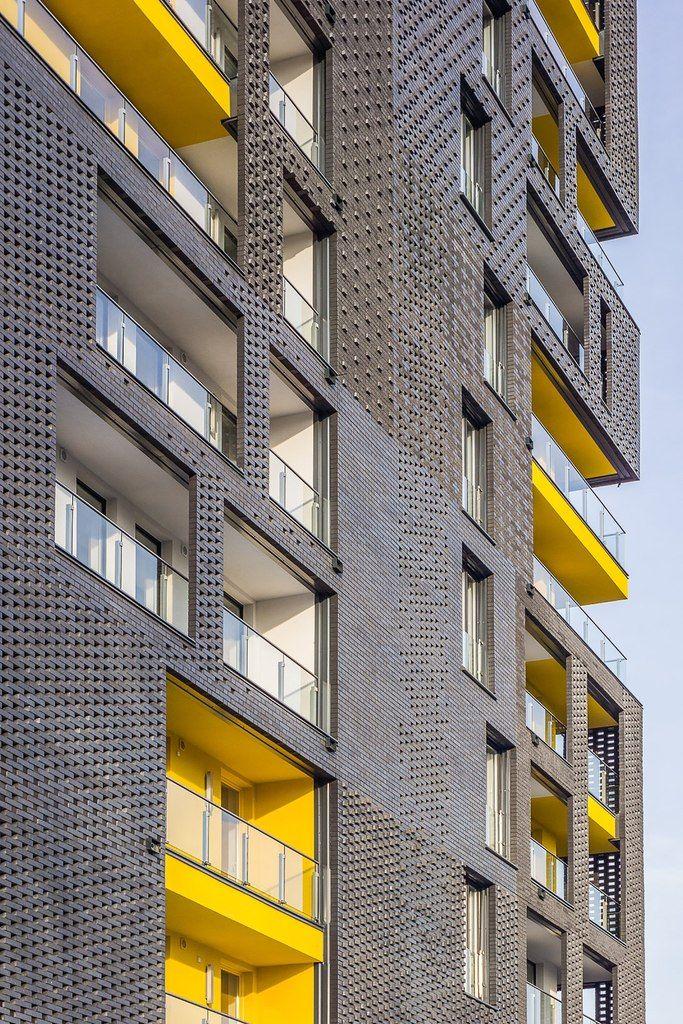 молва оформление фасадов жилых многоэтажных зданий фото животные, попавшие