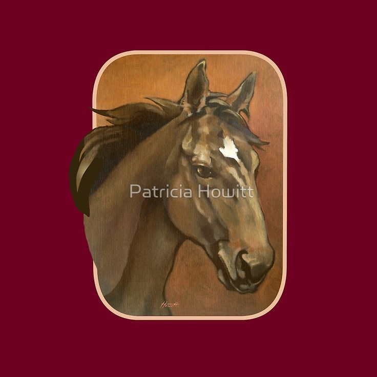 """""""Thoroughbred Stallion Scarf"""" Scarves by Patricia Howitt 