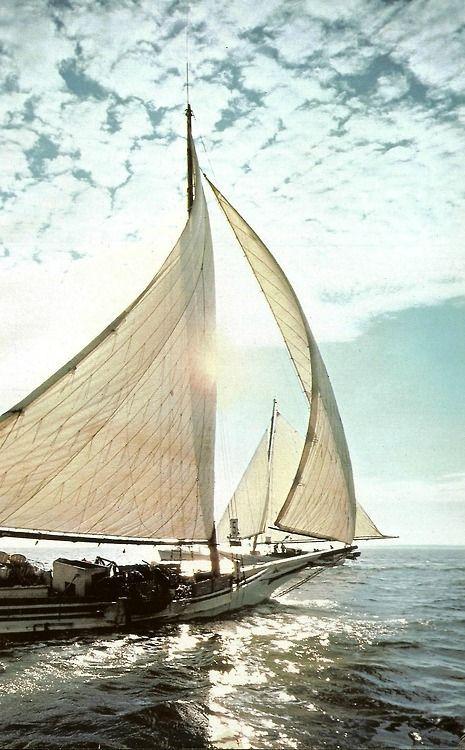 Gone sailing.