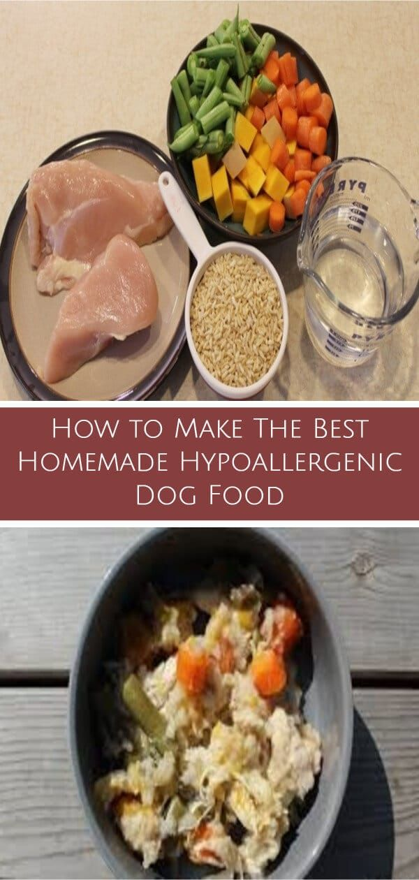 How To Make The Best Homemade Hypoallergenic Dog Food Dog Food
