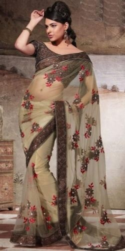 Brown Net Saree