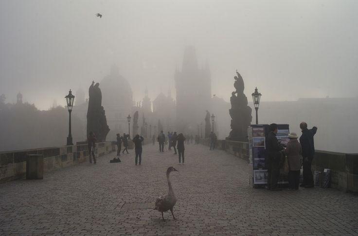 Praga, Repubblica Ceca. In questa foto, il Ponte Carlo.