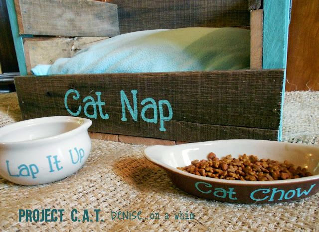 How I built a pallet cat bed and stenciled some dishes for the new addition to our family! Via Denise.. on a whim