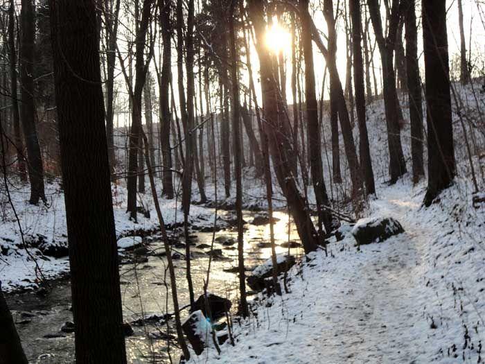 Eine Wanderung durch den winterlichen Spreepark in Neusalza-Spremberg