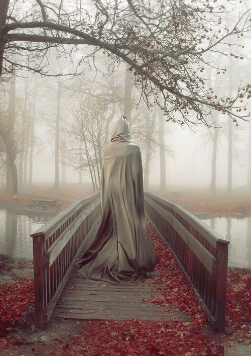 Solitary walk  http://voyagevisuelle.tumblr.com/post/72127857790/magical-enchanting-autumn/