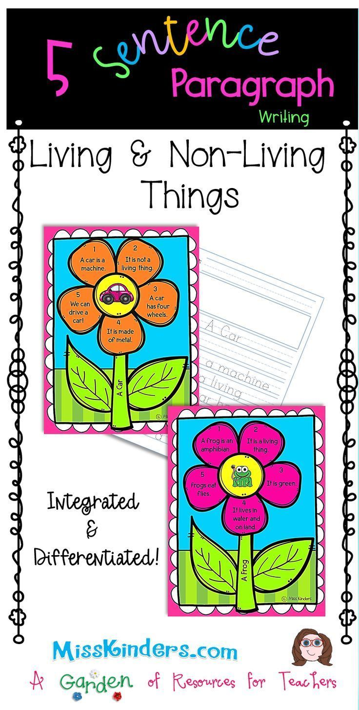 5 Sentence Paragraph Living And Non Living Things Kindergarten Resources Classroom Themes Writing Lessons [ 1454 x 736 Pixel ]