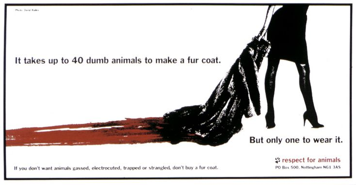 animal abuse posters ideas - photo #37