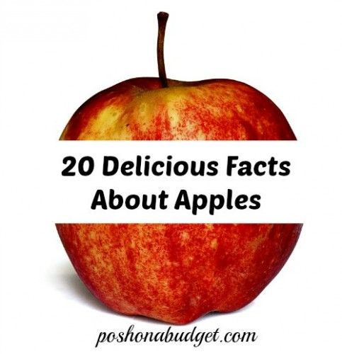 Apples really are good food!