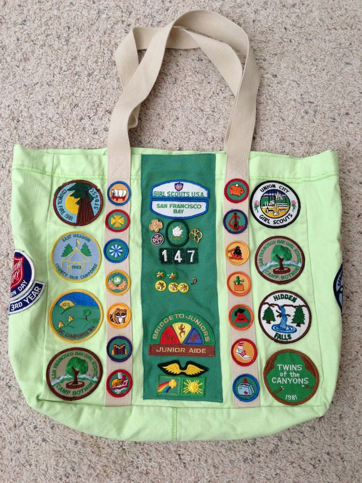 Picture of a girl scout sash — photo 15