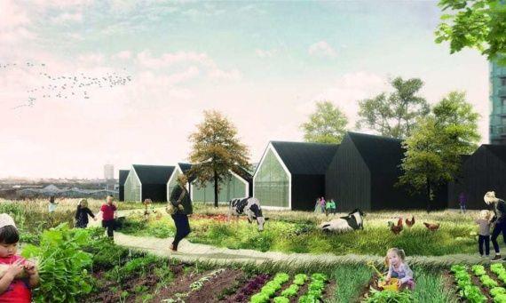Дошкольное образование на городской ферме