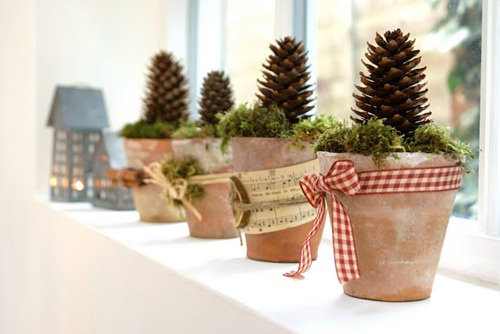clay pots planted with moss and cones, tied with twine or ribbon Via The Home Swenglish