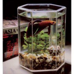 Kollercraft Betta Tank Plus Aquarium Kit ($6.67; Pet Food Direct)