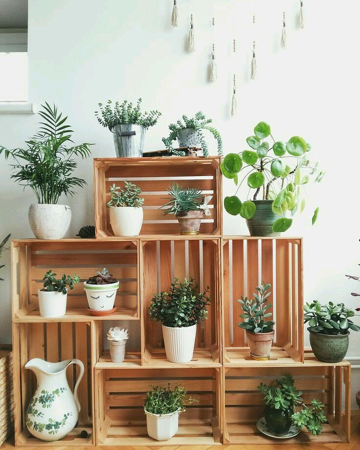 """Home Spaces on Instagram: """"Crates as plant stands 🌿🌿🌿 #crates #diy #plantlover #plants #plantstrong #doityourself #diydecor #home #lifestyleblogger #greenlife #plant …"""""""