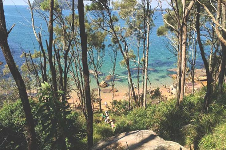 Best walks in the Northern Beaches