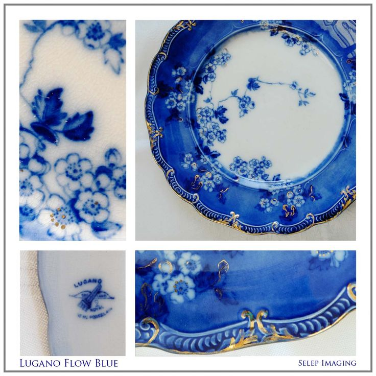 Flow Blue China Lugano Mark by Jeanne Selep Imaging