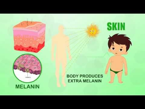 Learn about Human Body Parts For Kids - SKIN