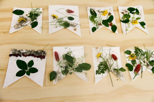 Project:  Peace Flags made with found natural ingredients  ages:  1 and up!    Materials needed:  found ingredients, glue, heavy weight paper or Card Stock,  yarn  Equipment needed:  hole punch, scissors