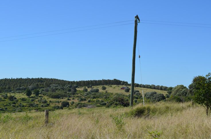 Barn View