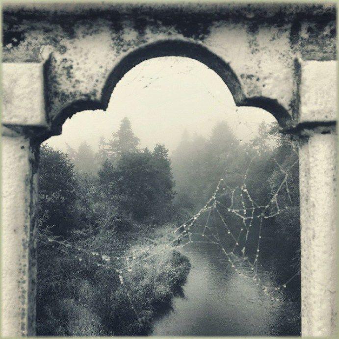 A #gothic #river … #newtown #powys #blackandwhite #newtownpowys #Hafren #severn #bridge #spiderweb #cobweb #fog - LinanDara's Art-n-Folk