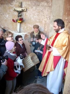 Blessing of the pets, Festa di San Antonio Abate, Rome