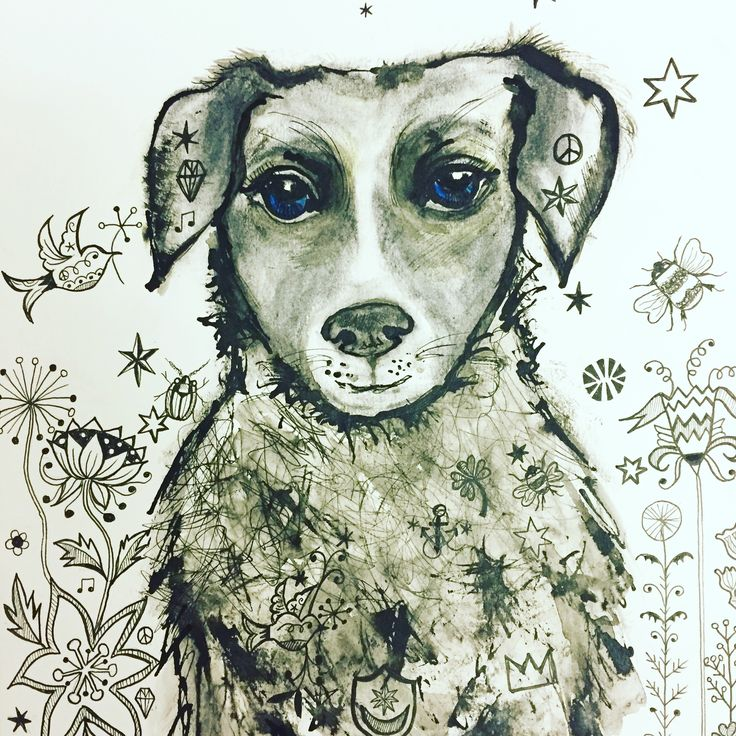 Pauline the Puppy ink drawing by Lizzie Reakes