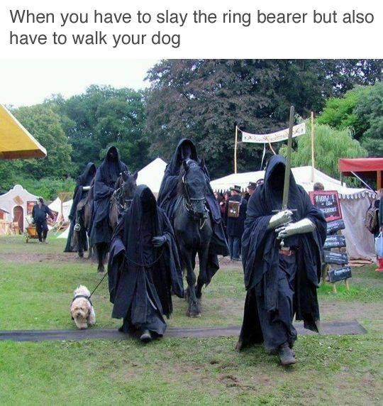 Do not come between the Nazgûl and his dog