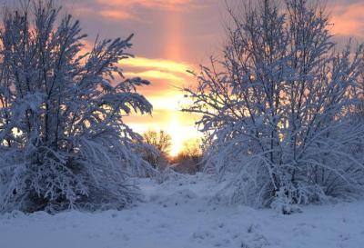 Mobile Web - News - Colorado snow totals for Feb. 25-26, 2015
