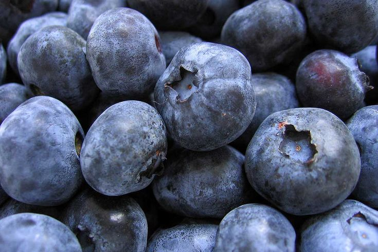 Blueberries can help with mental acuity, Metabolic Syndrome, gut health and muscle repair.