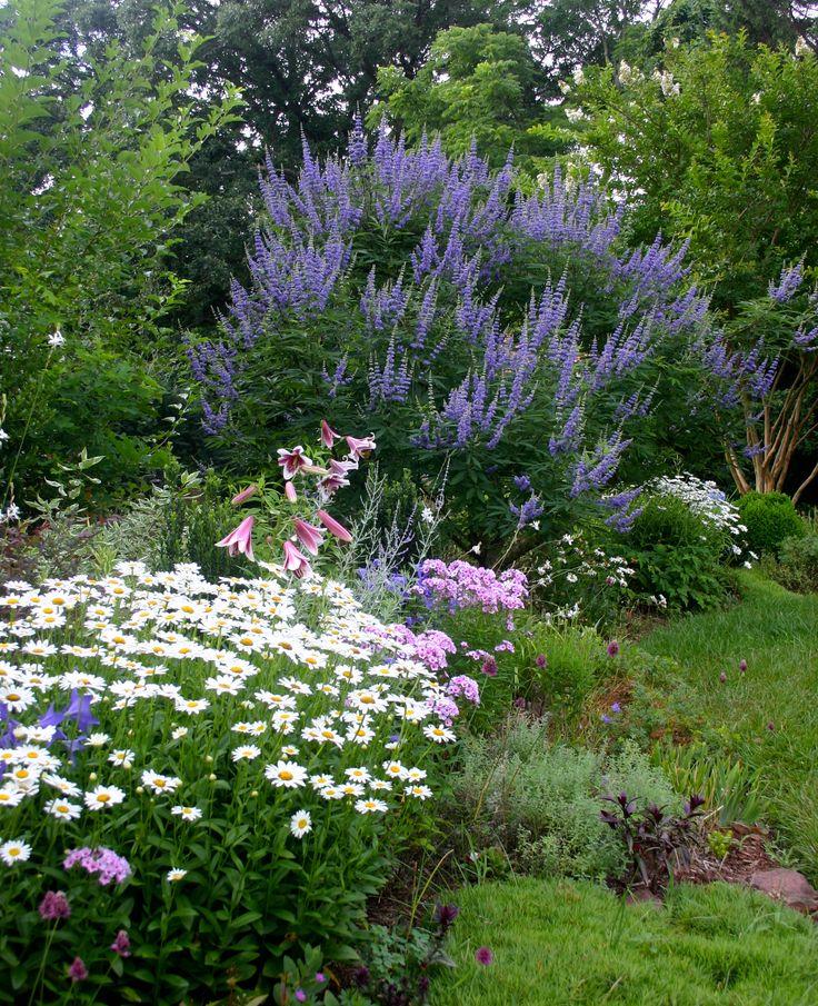 'Becky' shasta daisies, phlox paniculata, lilium 'Friso,' platycodon, drumstick alliums and vitex agnus-castus. Wendy Kremer's Garden, Early July 2013.