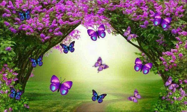 Pin de Pamela ramos em paisagem para mural | Festa de aniversario  decoracao, Festa jardim encantado simples, Festa jardim das borboletas