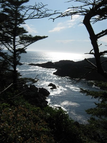 Daily View  Ucluelet - Life on the Edge  www.ucluelet.travel