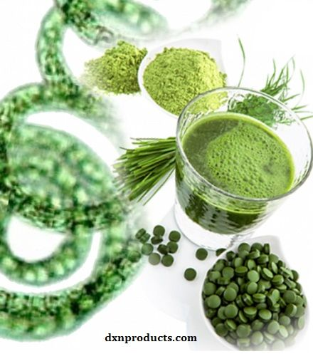 DXN Spirulina: the superfood-bomb that activates our organs like BOOM http://dxnproducts.com/spirulina