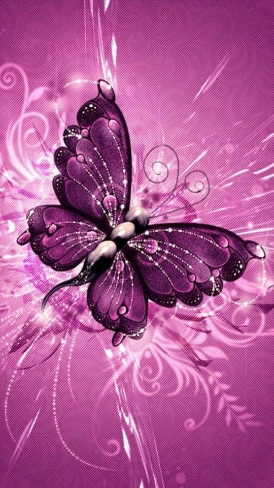 Purple batterfly Whatsapp background