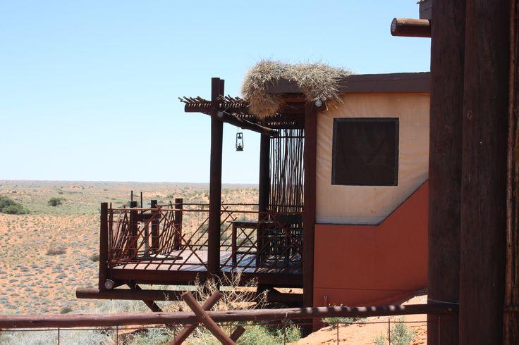 Kielie Krankie camp in Kgalagadi national park, SA
