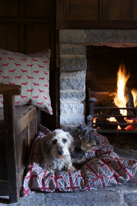 We love a cosy fire (with Emily Bond Union Jack and Dachshund cushions....)