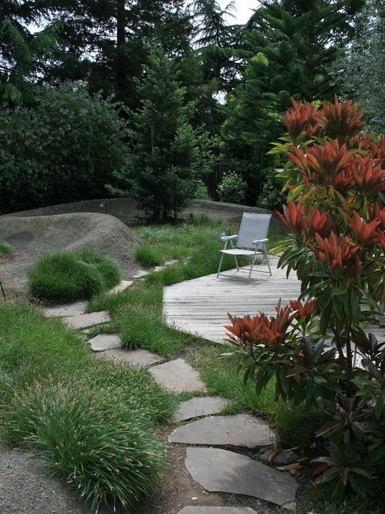 garden with pump track