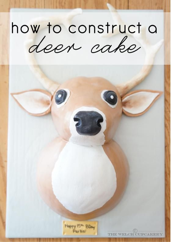 how to construct a deer cake