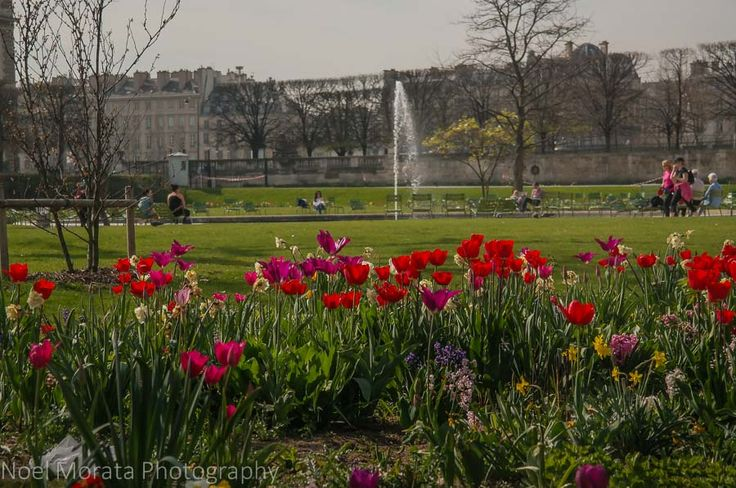 Spending a perfect day in Paris