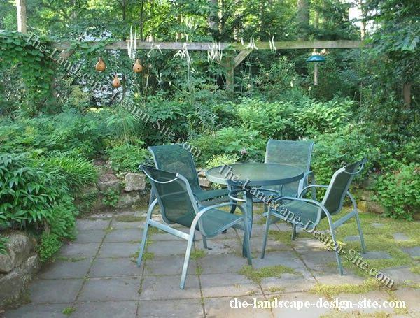 28 best woodland gardens images on pinterest woodland for Woodland landscape design