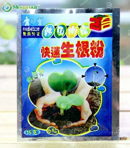 Transplanting Seedlings of Plants Necessary, Rapid Rooting, Rooting Agents Improve the Survival Rate - 2 Bag