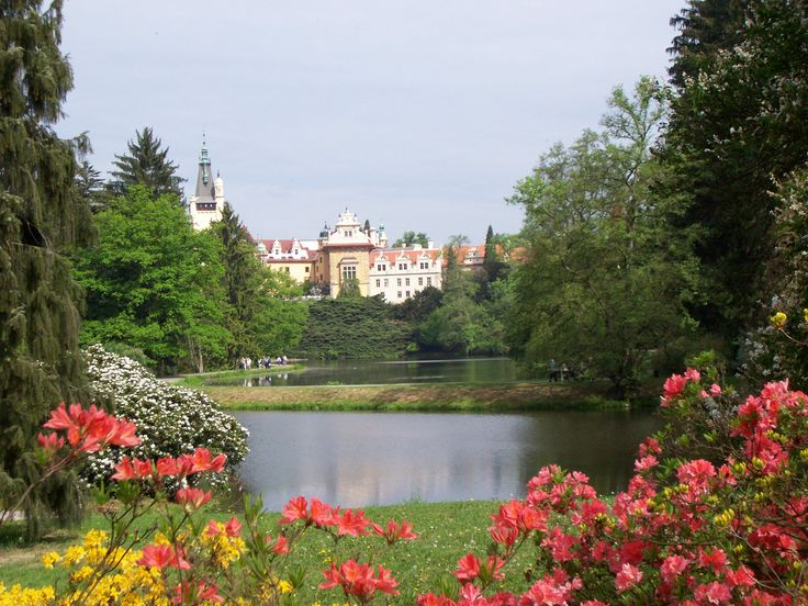 Průhonický park - park and chateau are registered in UNESCO list. It's a beautiful place to walk.