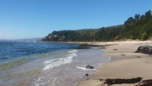 Playa tres pinos dichato, provincia de concepción, Chile