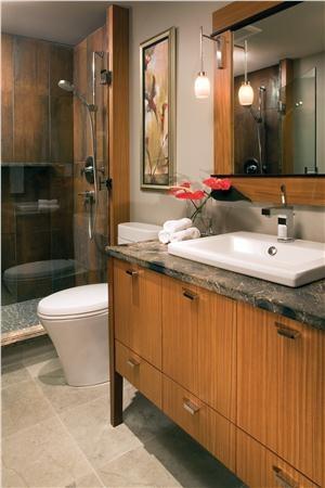 Bathroomphotosmall Bathrooms First Nkba Design Competitionscott Gjesdahl
