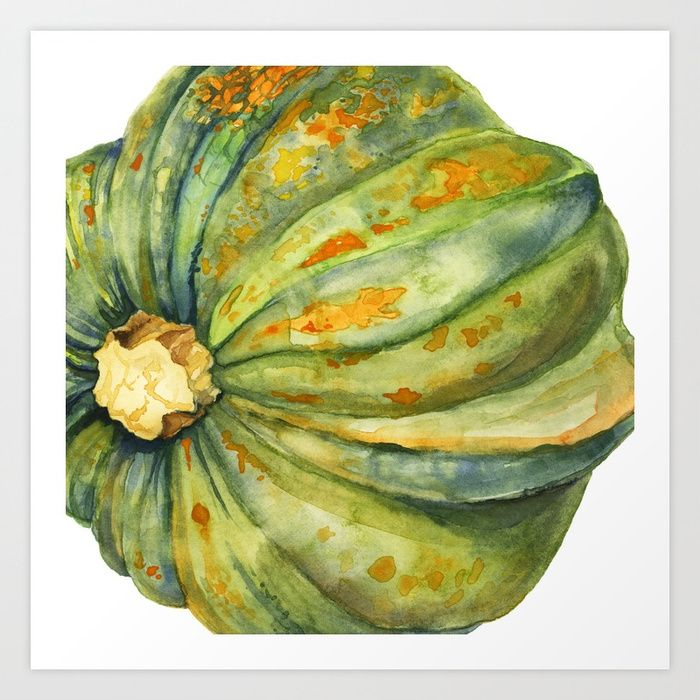 Buy Acorn Squash Art Print by cindylouillustration. Worldwide shipping available at Society6.com. Just one of millions of high quality products available.