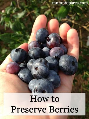 How to Preserve Berries