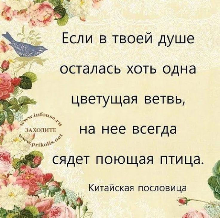 восточная стихи в картинках: 13 тыс изображений найдено в Яндекс.Картинках