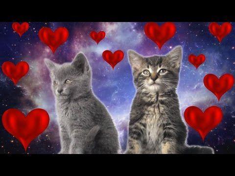 Консультации астролога. Астролог Татьяна Винтур http://astrologpro.ru вас любит и желает вам счастья!!!