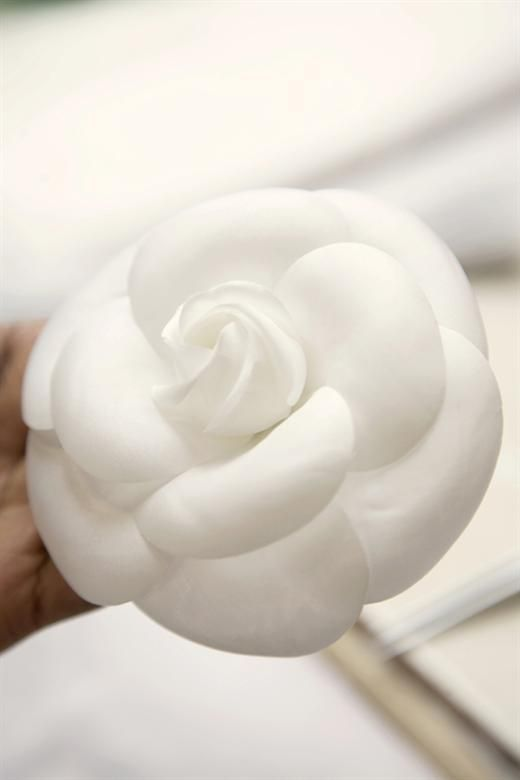 Maison Lemarié atelier. Of course, one of the most famous and Coco's favorite flower, Chanel signature