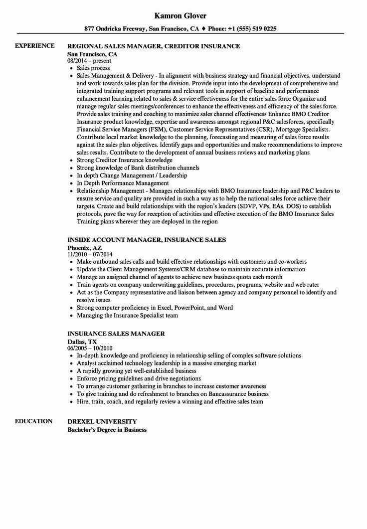Insurance Agent Resume Job Description Elegant Insurance