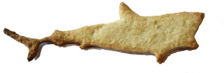 Dead shark biscuit.